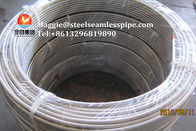 China Stainless Steel Coil Tubing, ASTM A269 TP304,TP304L,TP316L,TP316Ti,TP321,TP347H, Bright Annealed, Boiler tube company